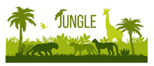 Jungle Silhouette Landscape, Rainforest Nature Outline Background, Palm Trees, Green Bushes, Giraffe. Africa Wildlife Scene, Panther, Leopard, Toucan, Stork Isolated On White. Jungle Silhouette Design