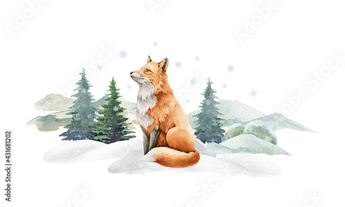 Fototapeta Fox animal in winter landscape. Watercolor illustration. Wild cute red fox in winter forest. Festive image print. Furry animal with red fur on white snow and fir trees. Side view forest animal obraz