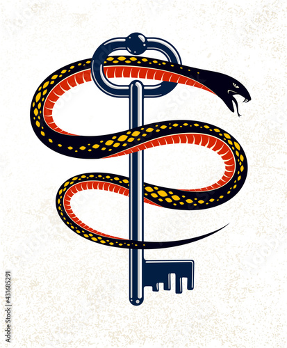 Obraz Snake wraps around vintage key, protected secret concept, turnkey and serpent old style tattoo, vector symbol logo or emblem. - fototapety do salonu