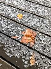 Hail And Leaves On Wood Deck, Melbourne Australia