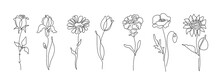Flowers Vector Set Illustration In Simple Minimal Continuous Outline Line Style. Nature Blossom Art For Floral Botanical Logo Design. Isolated On White Background