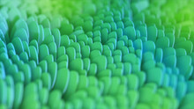 Abstract Geometric Background With Wave Surface. Scales In The Close-up. 3D Illustration