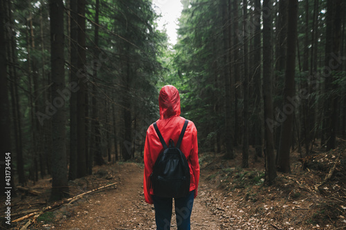 Hiker woman in red raincoat and backpack stands on a path in mountain forest and looks forward, rear view. Girl in the raincoat walks through the dark forest. Background. Copy space - fototapety na wymiar
