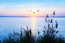 Tranquilo Amanecer En El Mar En Calma