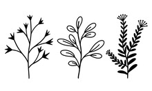 Set Of Vector Botanical Elements Branches With Leaves And Grass. Hand Drawn Doodle Style Plants. Herbs With Inflorescences And Berries. Isolated Objects On White Background
