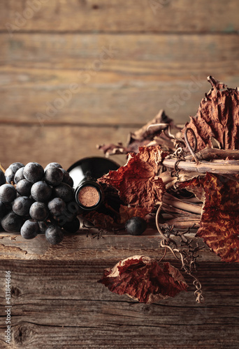 Obraz Bottle of red wine with grapes and dried vine on an old wooden table. - fototapety do salonu