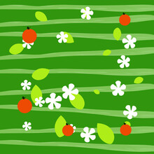 Oranges, Leaves, And White Flowers On A Green Background.