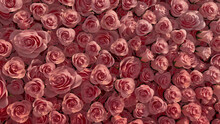 Beautiful Flowers Arranged To Create A Colorful Wall. Elegant, Red Background Formed From Vibrant Roses. 3D Render