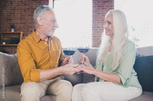 Obraz Photo of charming cheerful old man and woman couple family hold glass wine hands anniversary indoors inside house - fototapety do salonu