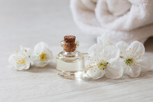 Apricot Or Cherry Essential Oil Or Perfume Glass Bottle With Fresh Flowers River Pearls On Wooden Background, Spa