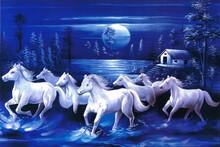 Seven Running White Horses