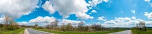 Panorama View Of Mountain Meadow With Flowering Pear Trees Against A Backdrop Of Spruce Forest And Picturesque Sky