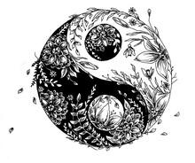 Yin Yang Circle