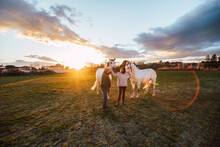 Ranchers Talking While Standing With Horses In Ranch During Sunset