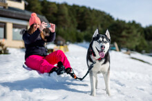 Woman Photographing Through Mobile Phone While Sitting By Siberian Husky On Snow Covered Field During Winter