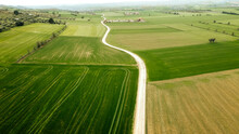 Green Rural Land With Dirt Road Seen From Drone