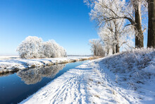 Germany, Brandenburg, Snow-covered Trees Reflecting In River