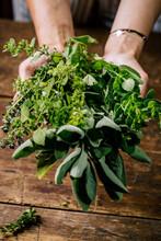 Senior Woman Holding Fresh Green Herbs Over Table