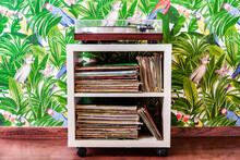 Record Player And Collection Of Records Against Wallpaper In Jungle And Parrots Pattern