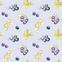 Green And Red Grapes Seamless Pattern On A Soft Blue Background. Watercolor Illustration. Fresh And Juicy Painting; Perfect For Farmhouse Style - Kitchen Decor And Textile, Wrapping Paper.