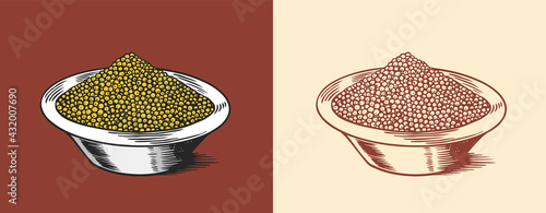Mustard seeds or Spicy condiment. Dip or dipping sauce. Illustration for Vintage background or poster. Engraved hand drawn sketch.