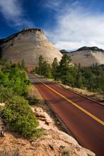 Checkerboard Mesa, Gifford Canyon, Mt Carmel Highway, Zion National Park, USA
