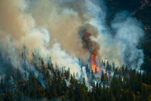 Firefighters In Washington State, USA Prescribed Burns In The Preston/Fox Area Of The Entiat Valley.