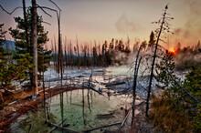 Norris Geyser Basin, Yellowstone National Park, Wyoming