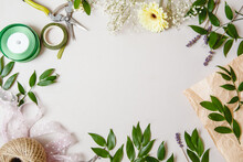 Branches With Leaves, Flowers And Florist's Work Tools On A White Background. Flat Layout With Space For Text
