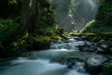 Wells Creek, Snoqualmie National Forest, Washington State, USA
