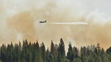 Lead Plane Identifying Where To Drop Retardant, Rim Fire, Groveland, California