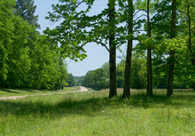 Mile Marker 200 To 100, Natchez Trace Parkway, Tennessee And Mississippi, USA