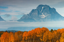 Mount Moran, Eagle, And Fall Foliage In Grand Teton National Park