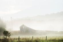 Barn In Fog Luray VIRGINIA