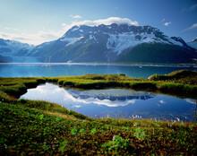 Harriman Fiord, Alaska
