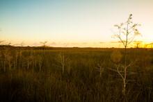 A Sunset Scene Of The Grasslands Of Everglades National Park.
