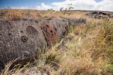 Petroglyphs At Pu'u Loa In Volcanos National Park, Hawaii.