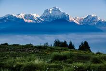 Dhaulagiri An 8000 Meter Peak In The Morning Sun - Poon Hill - Anapurna Circuit - Ghorepani, Nepal