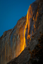 Yosemite National Park. Horsetail Falls Lit From Behind By The Setting Sun, Creating The Famed Firefall.