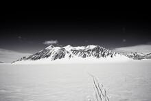 Ski Tracks In Antarctica