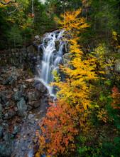 Hadlock Falls, Acadia National Park, Maine