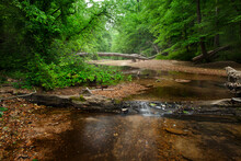 Little Sandy Creek, Rocky Springs, Natchez Trace Parkway, Tennessee And Mississippi, USA