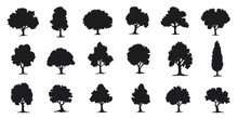 Various Deciduous Trees Silhouettes On The White Background