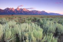 Scenic Landscape Image Of Sagebrush Flats And Teton Range, Grand Teton National Park, Wyoming