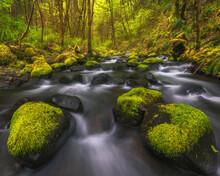 A Beautiful Cascade Through Mossy Rocks And Foliage.