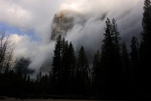 Clouds Engulf El Capitan Early In The Morning Of Yosemite National Park.