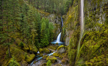 Lush Spring Green Color At Wahclella Falls In The Columbia River Gorge