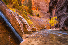 A Small Falls Feeds Into The Virgin River In The Narrows Of Zion National Park.