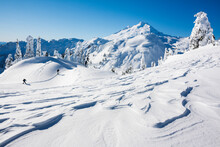 Skiers Travel Over The Wind Swept Snow Of Artist Point, Mount Baker National Forest, Washington. Mount Baker And Ptarmigan Ridge Are Visible In The Distance.