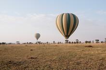 Hot Air Balloons Landing After A Morning Trip Above Serengeti National Park, Tanzania.